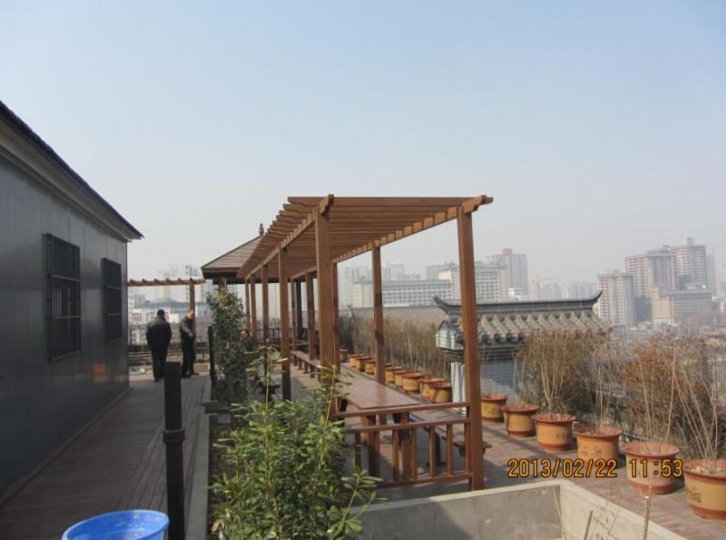西安西门沃尔玛屋顶绿化 (3)