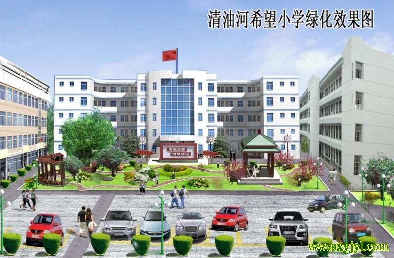 商南县清油河小学绿化 (1)