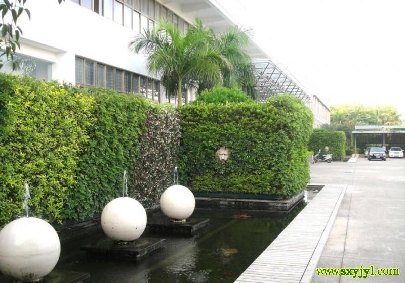 立体绿化 (1)
