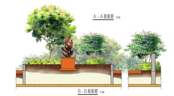 植物配置剖面手绘图