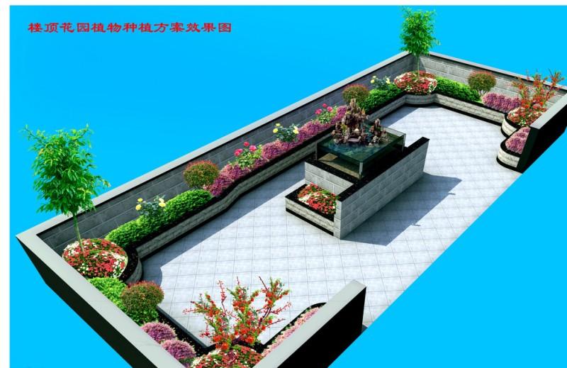 楼顶花园图片