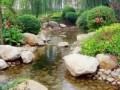 水景工程中生态驳岸的选择