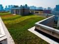西安软件园屋顶绿化理水系统 (2)