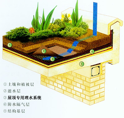 屋顶理水层