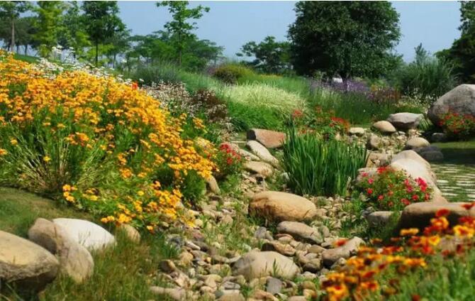 美丽的旱溪景观