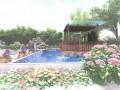 庭院花园设计 (8)